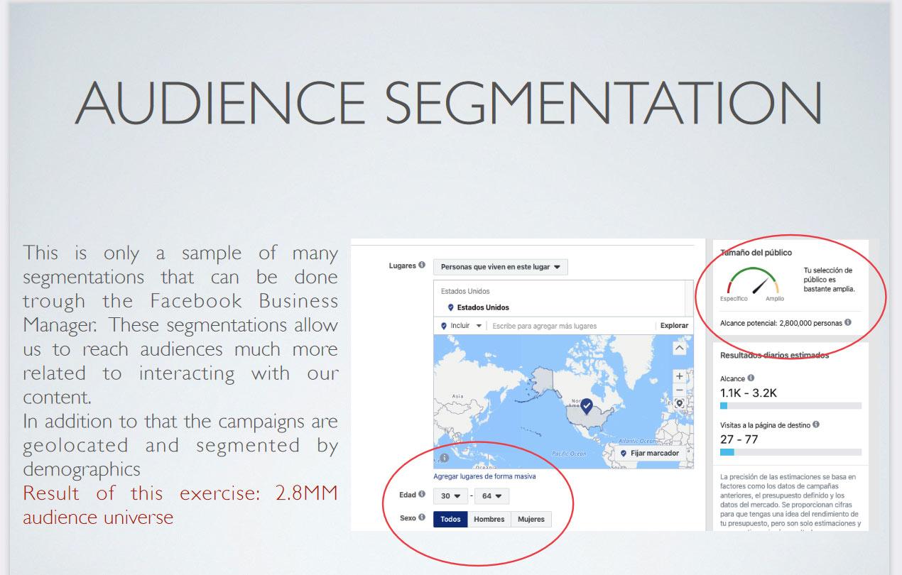 segmentación de audiencia en redes sociales